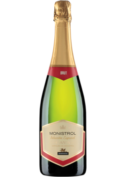 10 Under $10 Sparkling Wines For New Year's Eve - Rondel Brut Cava