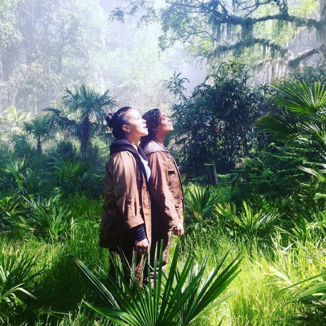 Books Becoming Movies in 2017 - Annihilation