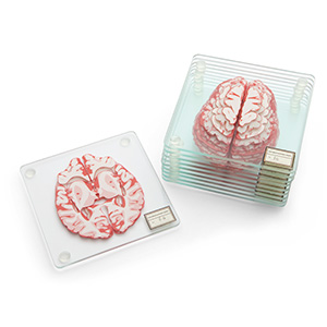 20 Geek Gifts For Him Under $20 - Brain Specimen Coasters